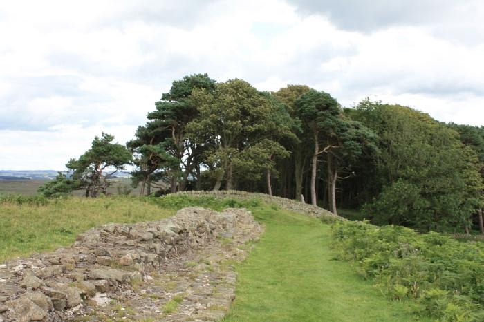Hadrian's Wall 072
