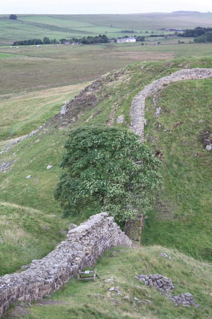 Hadrian's Wall 134