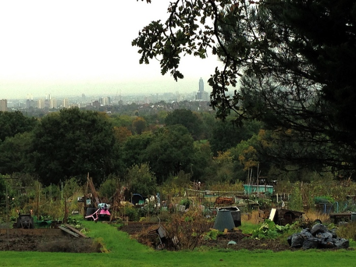 OTH Allotments